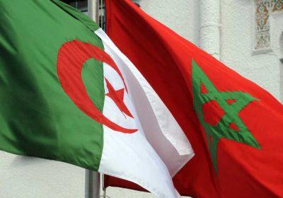 الدون كيشوط يبعث بالجزائر!